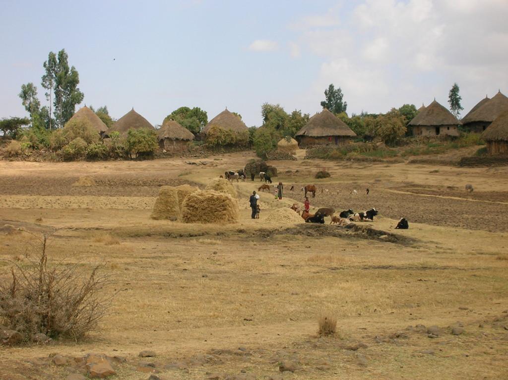 etiopia chozas