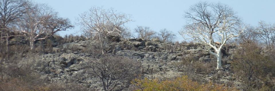 Namibia 2, de Outjo a Khorixas
