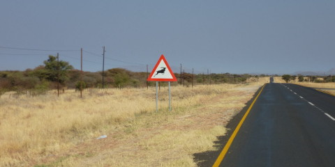 Namibia 1, de Otjiwarongo a Outjo