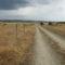 Ruta de la Plata, de Bejar a Salamanca