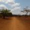 Tanzania 1, de Moshi a Lake Chala